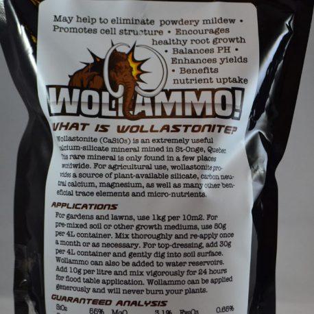 wollammo2kg-redbgback